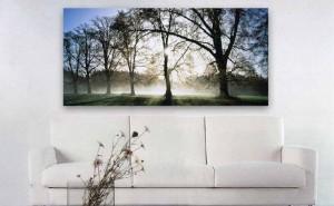 ideas de decoración, cuadros modernos, soportes de impresión, impresión metacrilato transparente, aplicaciones metacrilato
